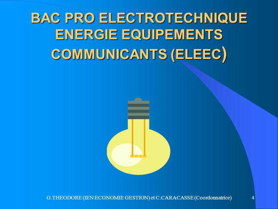 BAC PRO ELECTROTECHNIQUE ENERGIE EQUIPEMENTS COMMUNICANTS (ELEEC)