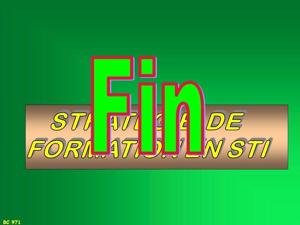 Fin STRATEGIE DE FORMATION EN STI