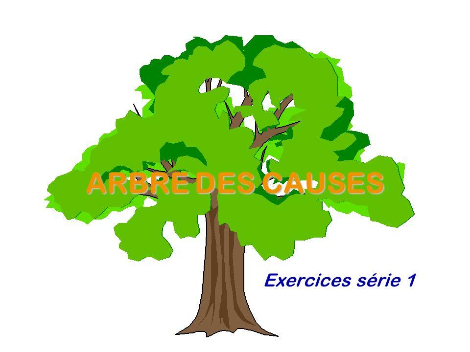 ARBRE DES CAUSES Exercices série 1