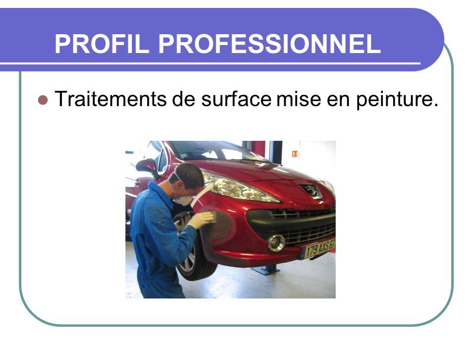 PROFIL PROFESSIONNEL Traitements de surface mise en peinture.