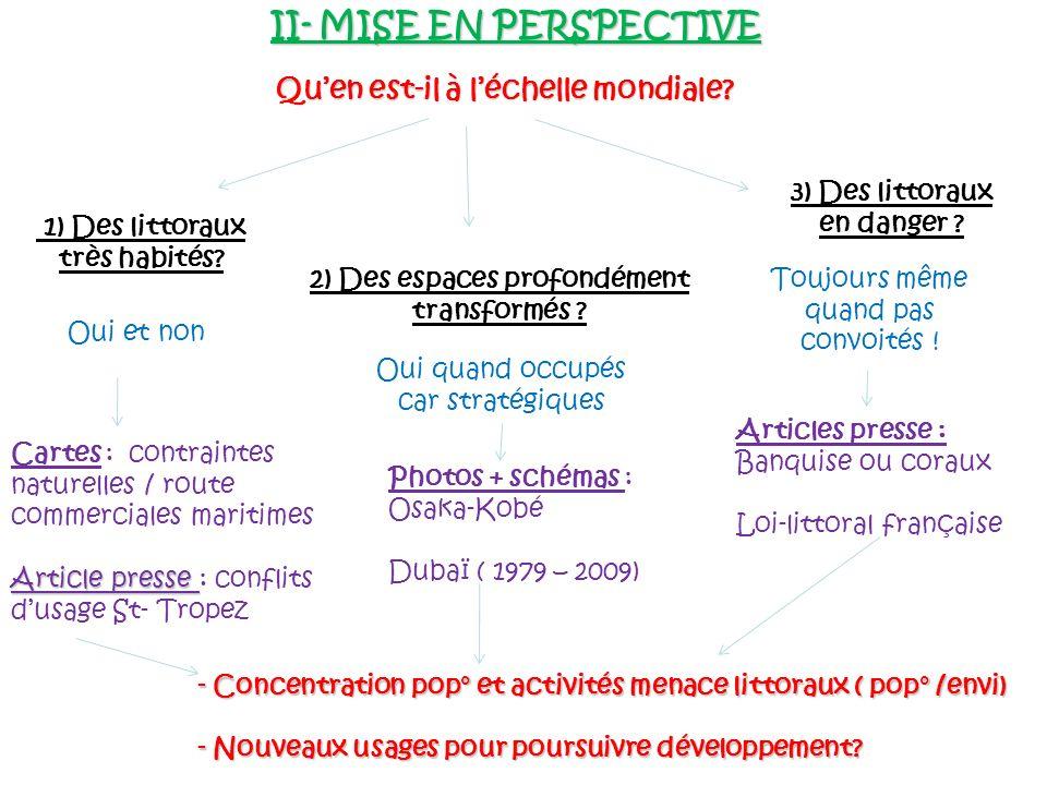 II- MISE EN PERSPECTIVE