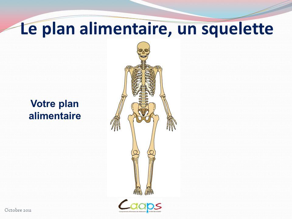 Le plan alimentaire, un squelette