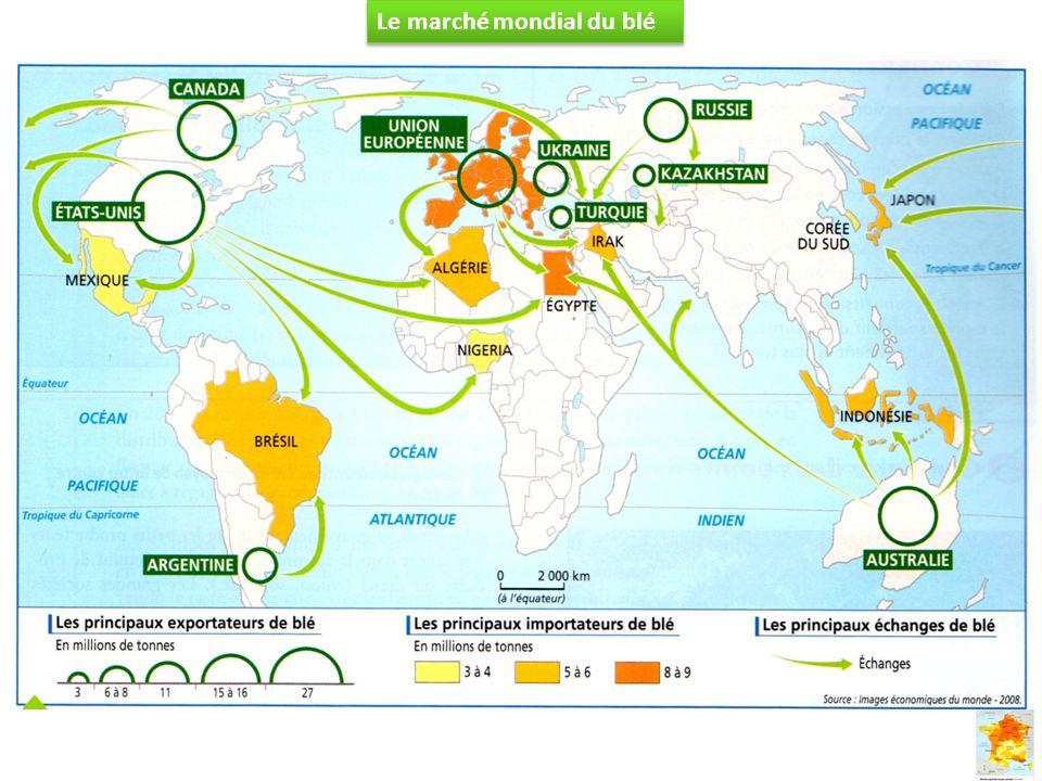 Le marché mondial du blé