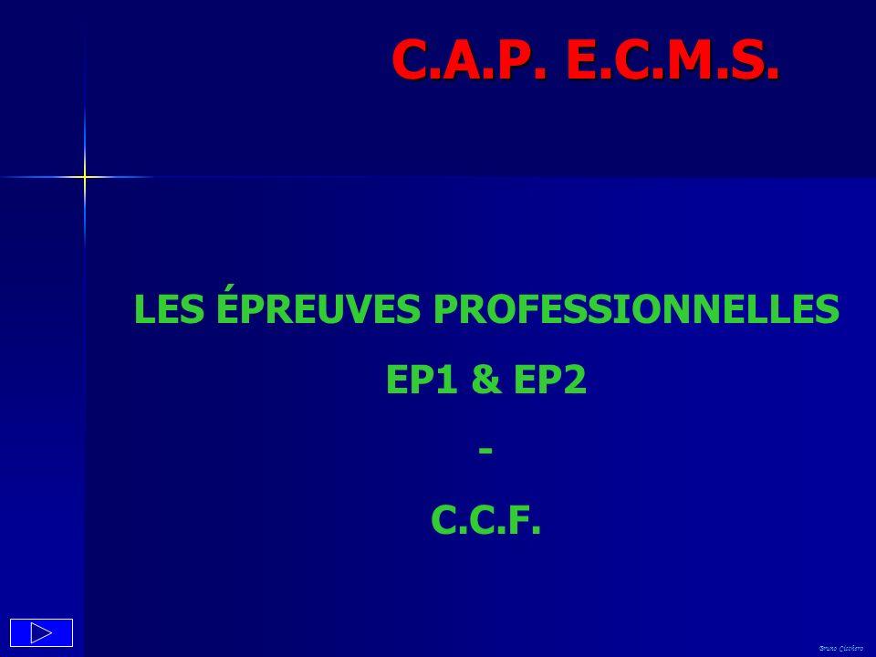 LES ÉPREUVES PROFESSIONNELLES