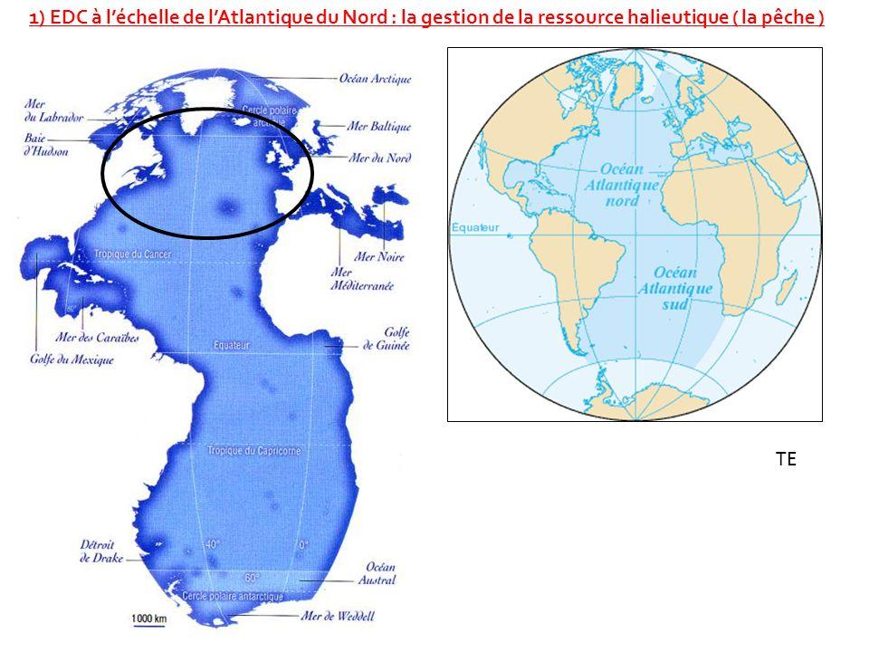 1) EDC à l'échelle de l'Atlantique du Nord : la gestion de la ressource halieutique ( la pêche )