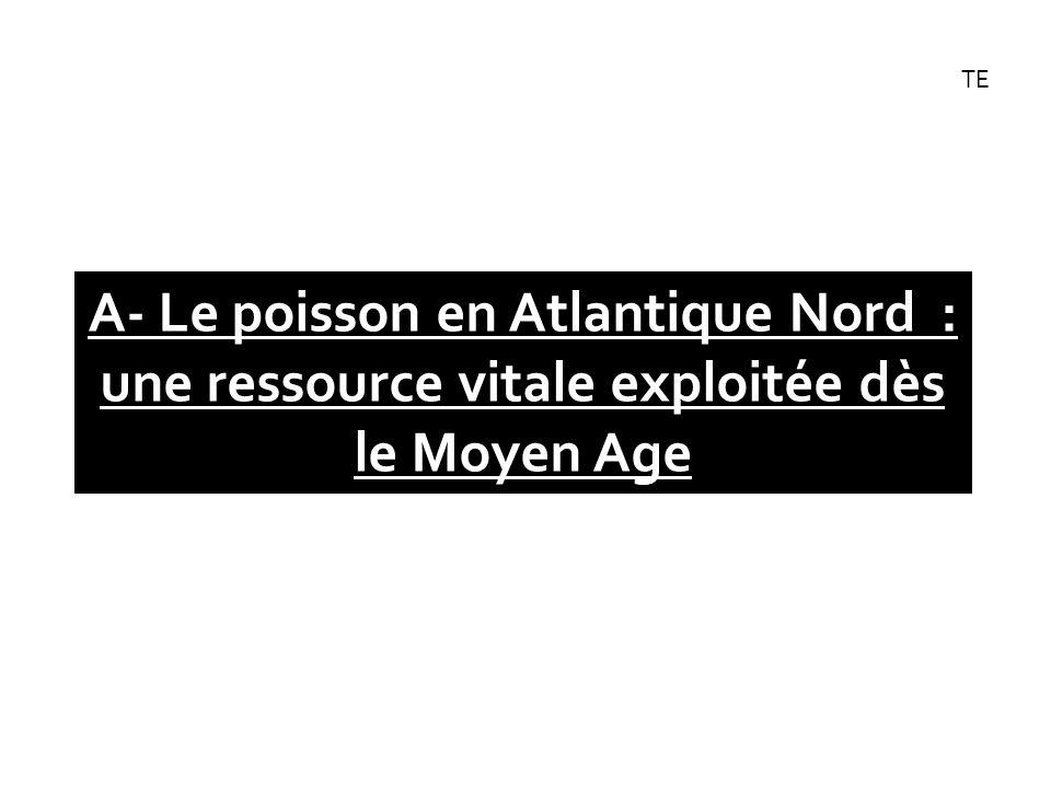 TE A- Le poisson en Atlantique Nord : une ressource vitale exploitée dès le Moyen Age