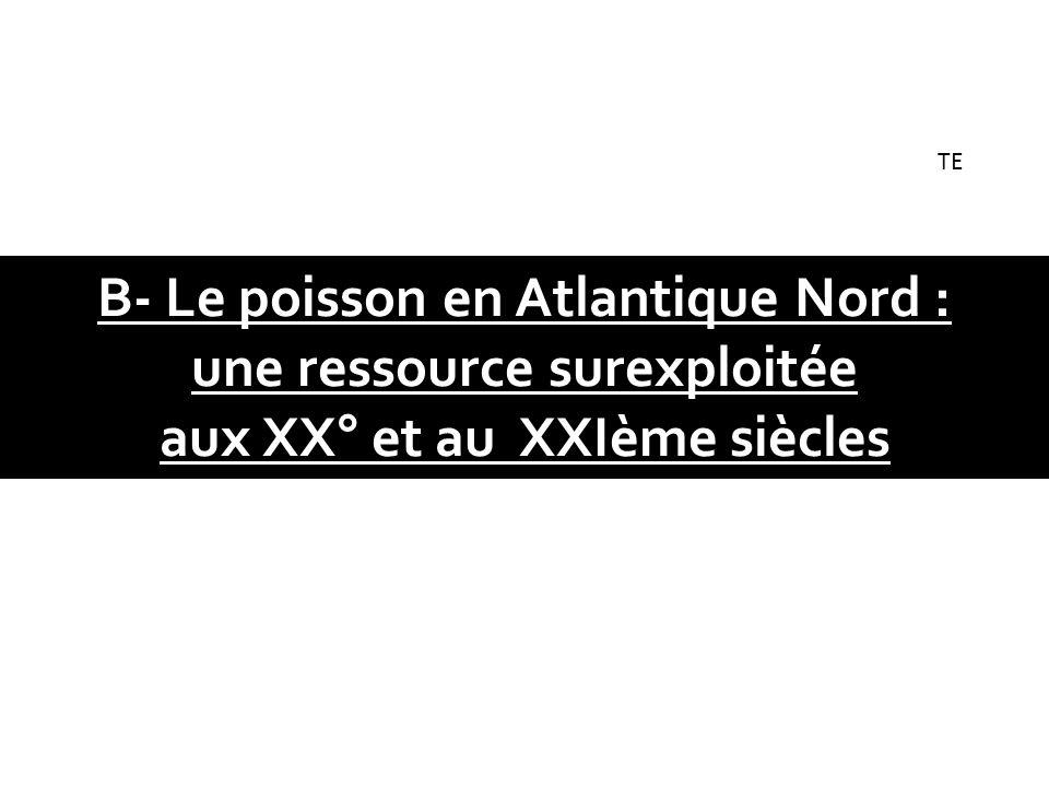B- Le poisson en Atlantique Nord : une ressource surexploitée