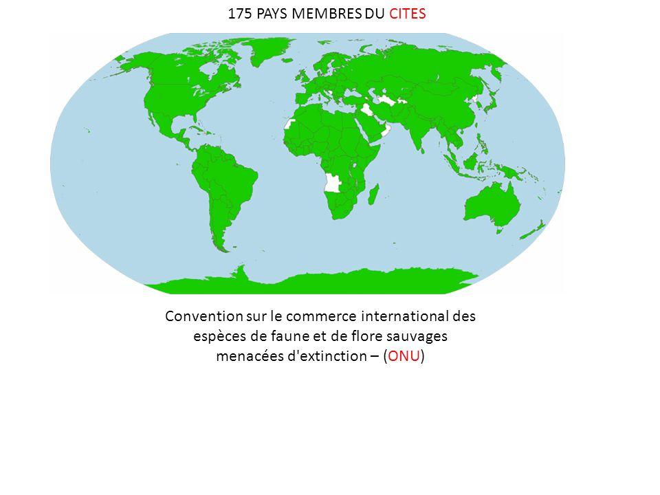 175 PAYS MEMBRES DU CITES Convention sur le commerce international des espèces de faune et de flore sauvages menacées d extinction – (ONU)