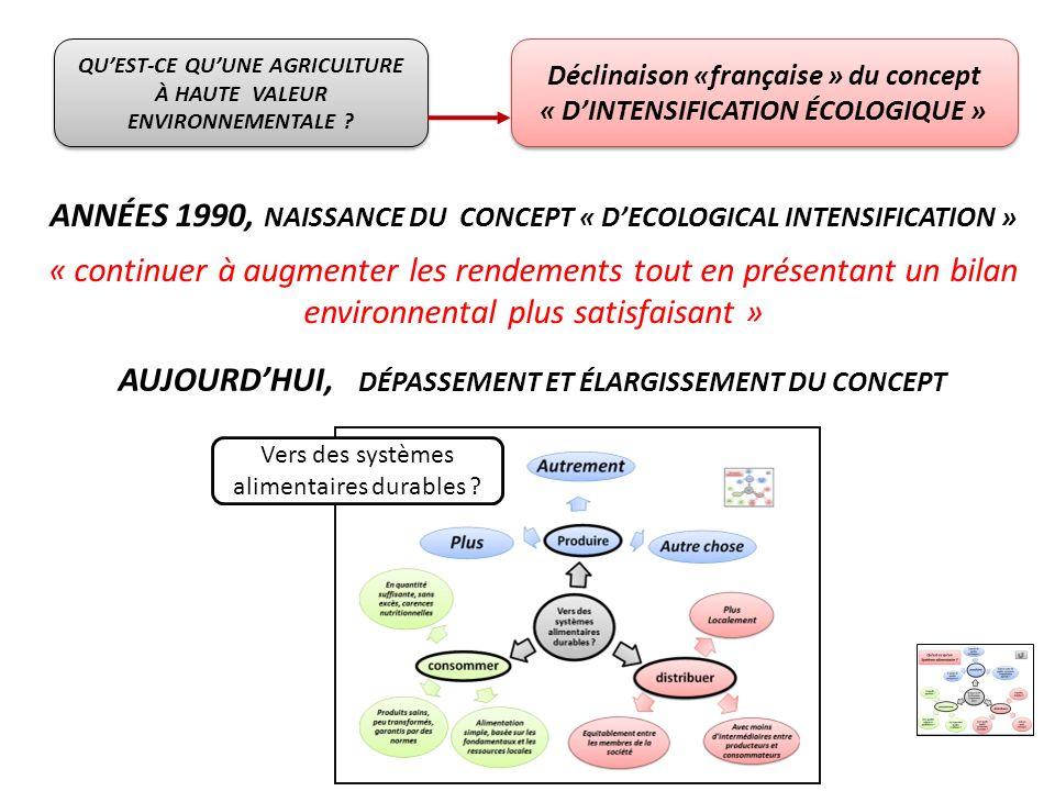 ANNÉES 1990, NAISSANCE DU CONCEPT « D'ECOLOGICAL INTENSIFICATION »