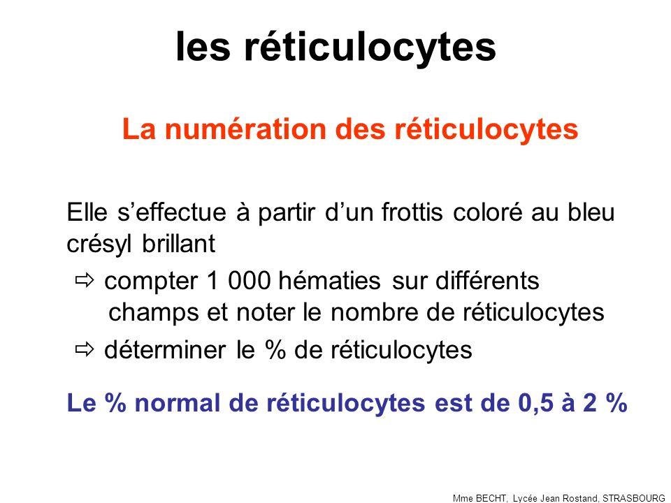 La numération des réticulocytes