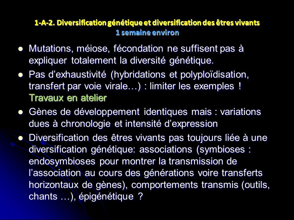 1-A-2. Diversification génétique et diversification des êtres vivants 1 semaine environ