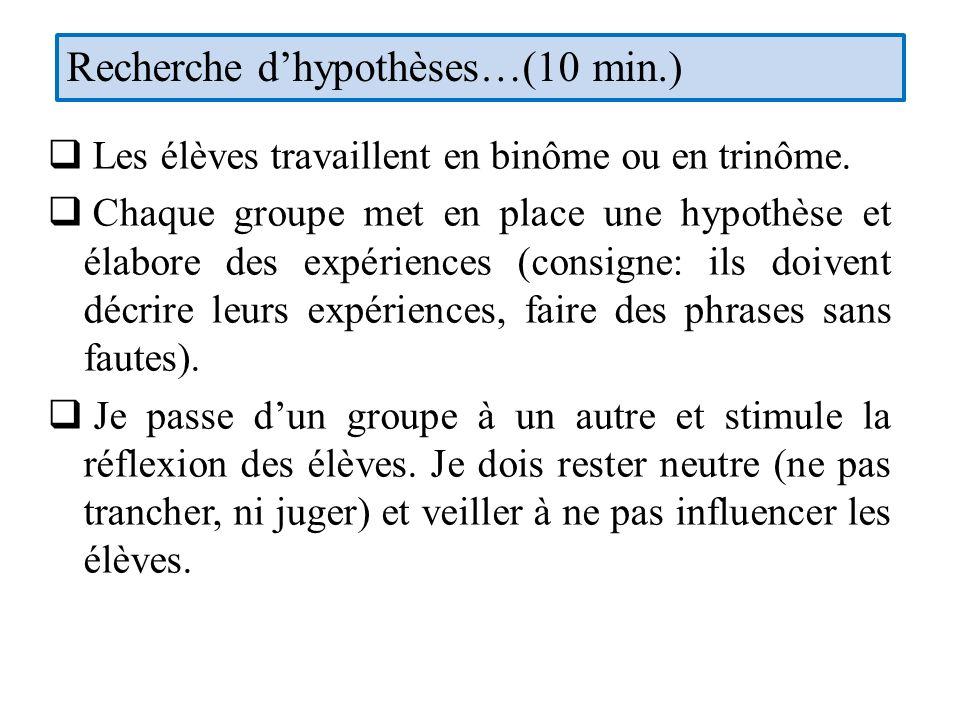 Recherche d'hypothèses…(10 min.)
