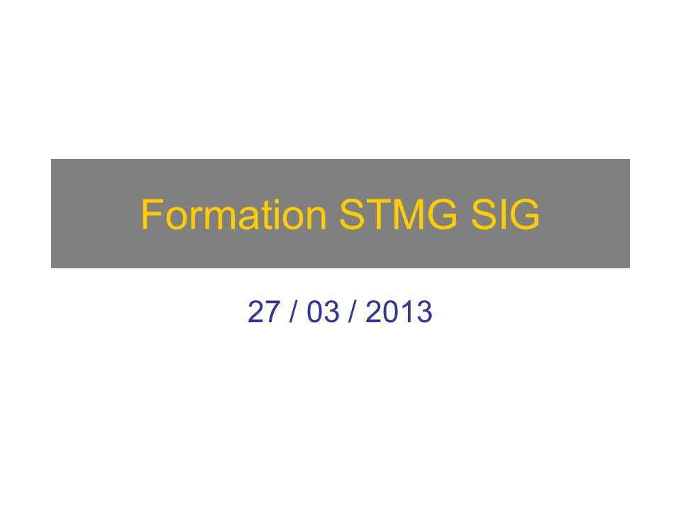 Formation STMG SIG 27 / 03 / 2013