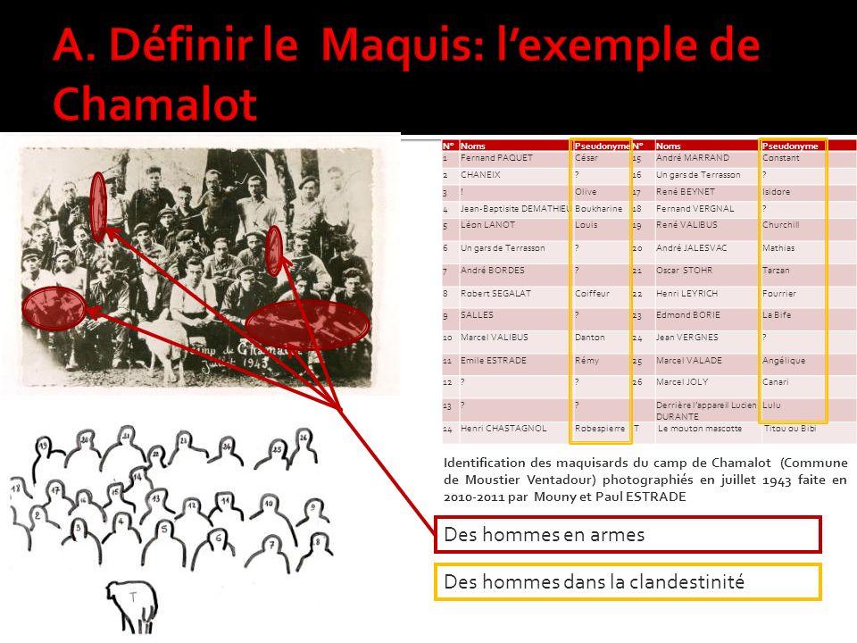 A. Définir le Maquis: l'exemple de Chamalot