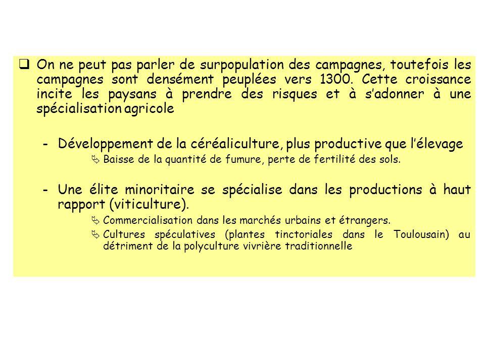 Développement de la céréaliculture, plus productive que l'élevage