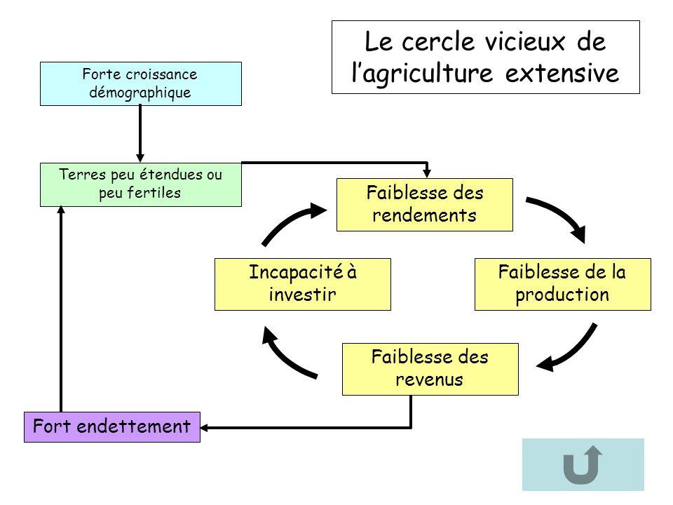 Le cercle vicieux de l'agriculture extensive