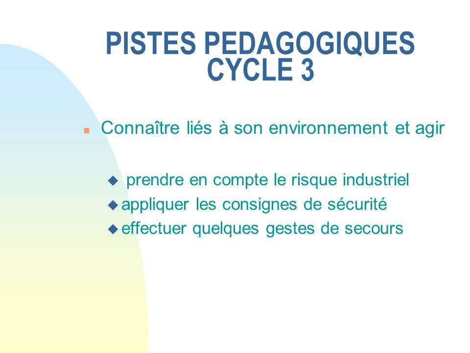PISTES PEDAGOGIQUES CYCLE 3