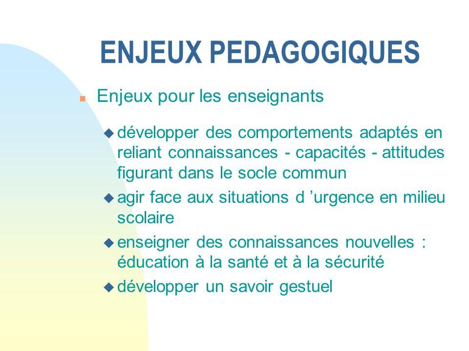 ENJEUX PEDAGOGIQUES Enjeux pour les enseignants