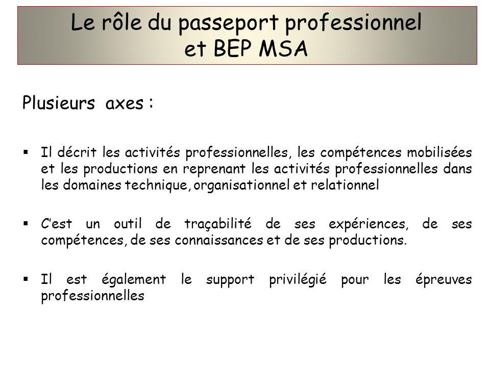 Le rôle du passeport professionnel et BEP MSA