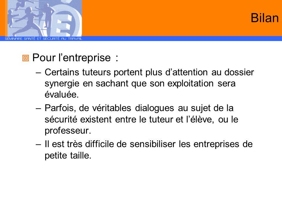 Bilan Pour l'entreprise :
