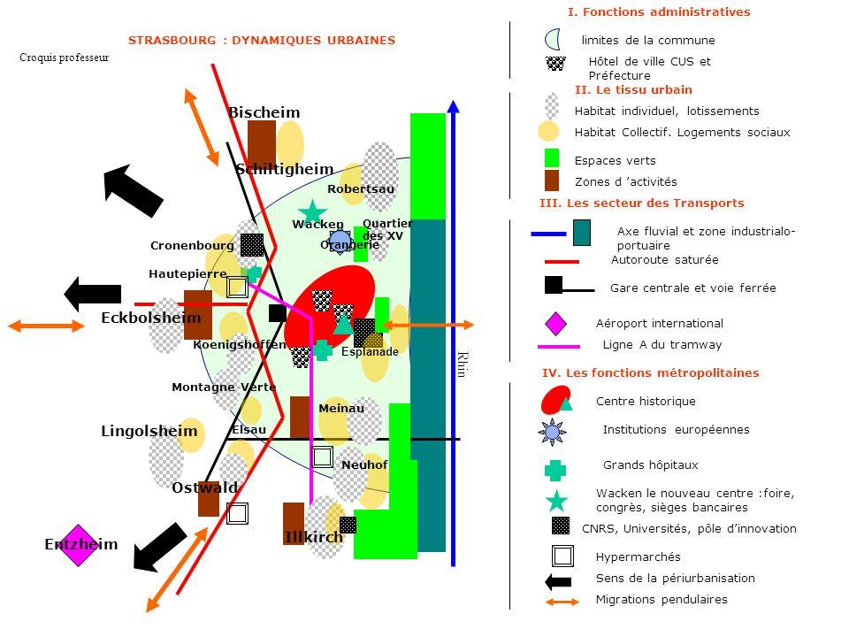 STRASBOURG : DYNAMIQUES URBAINES IV. Les fonctions métropolitaines