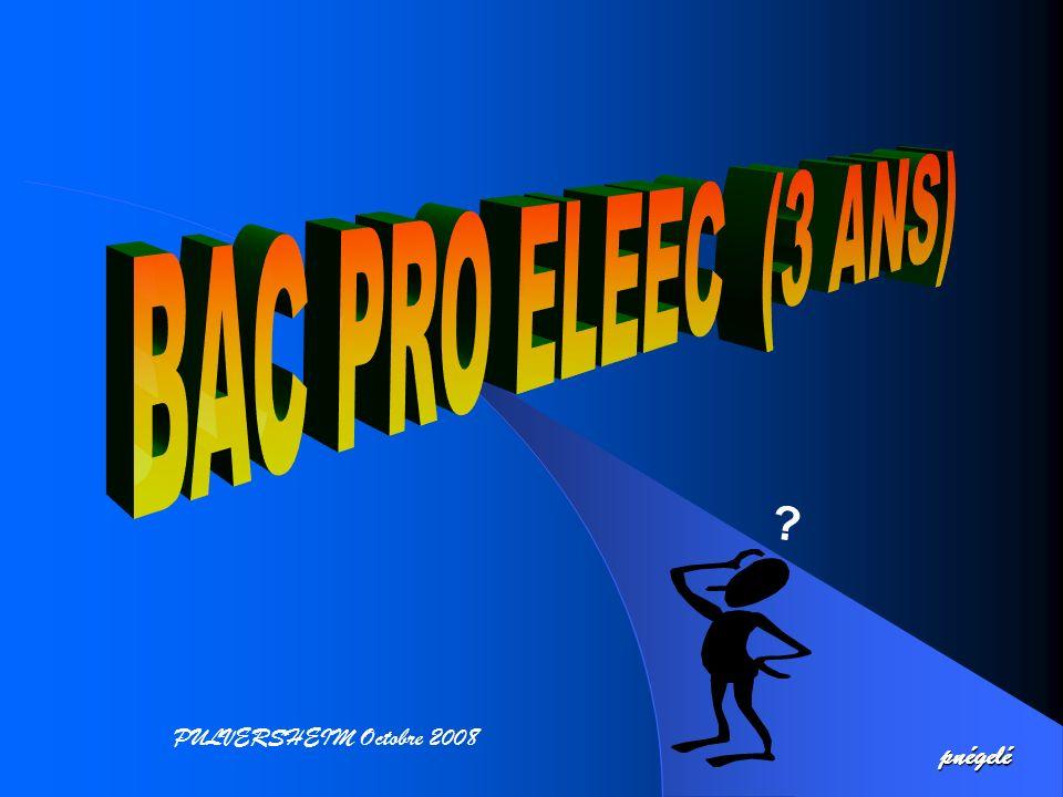 BAC PRO ELEEC (3 ANS) PULVERSHEIM Octobre 2008 pnégelé