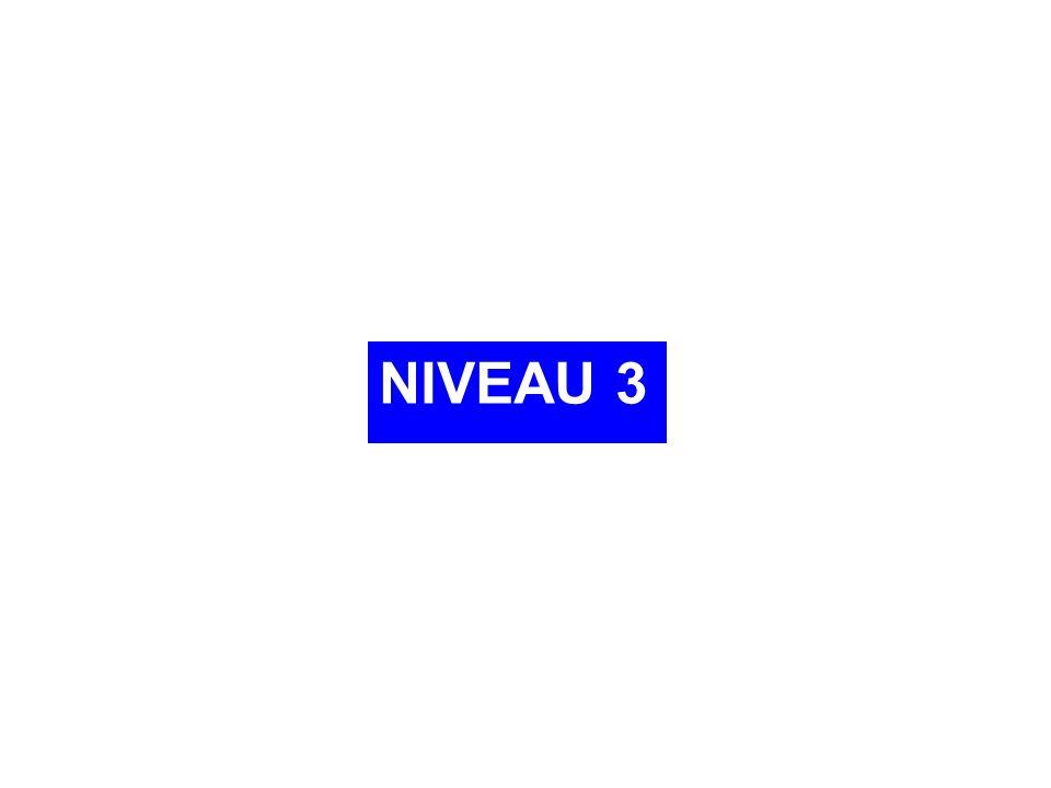 NIVEAU 3