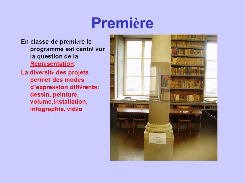 Première En classe de première le programme est centré sur la question de la Représentation.