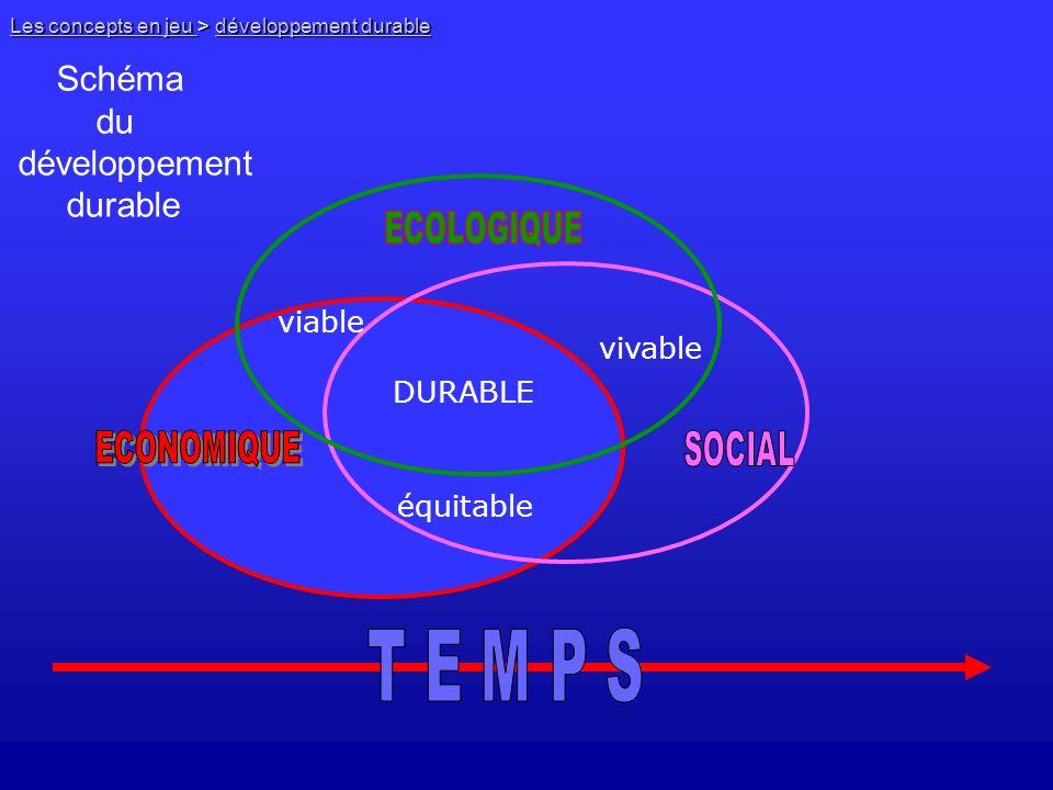 T E M P S Schéma du développement durable viable vivable DURABLE