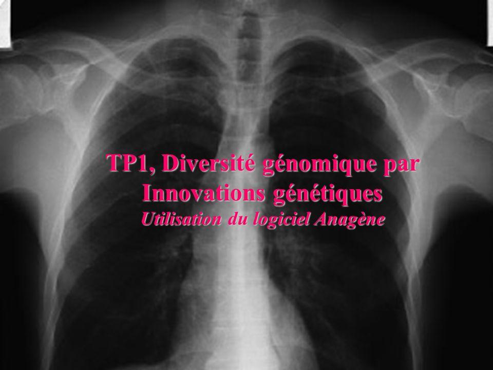 TP1, Diversité génomique par Innovations génétiques