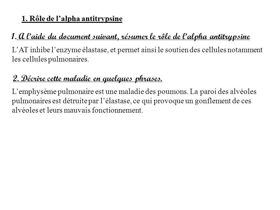 A l'aide du document suivant, résumer le rôle de l'alpha antitrypsine