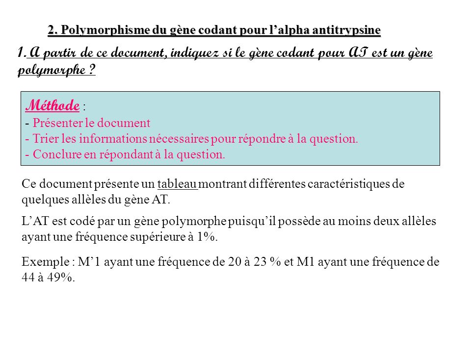 2. Polymorphisme du gène codant pour l'alpha antitrypsine