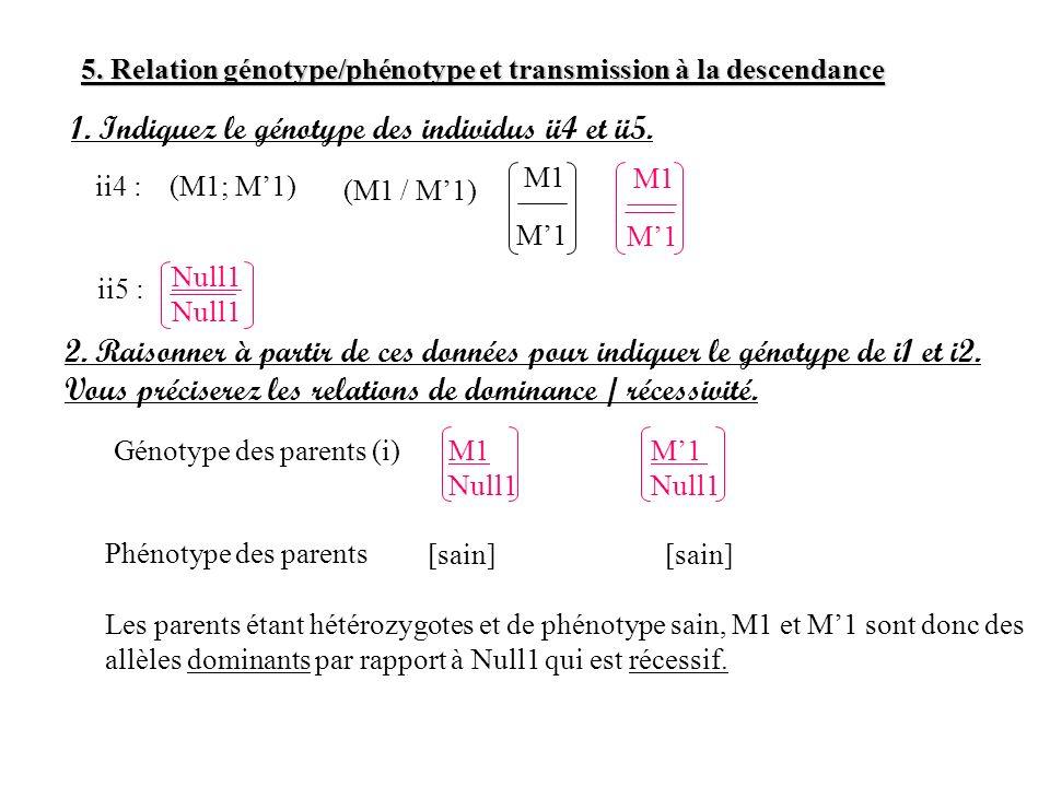 1. Indiquez le génotype des individus ii4 et ii5.