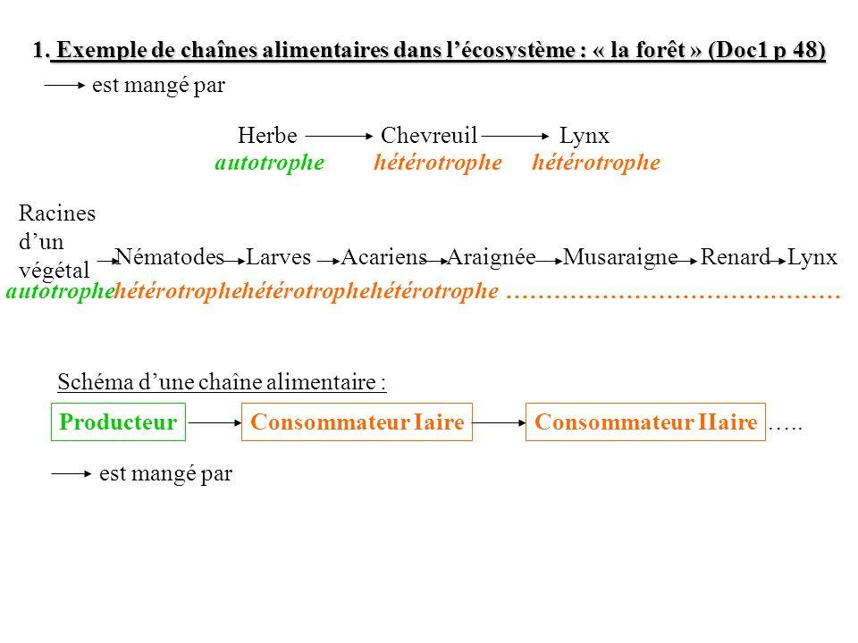 Exemple de chaînes alimentaires dans l'écosystème : « la forêt » (Doc1 p 48)