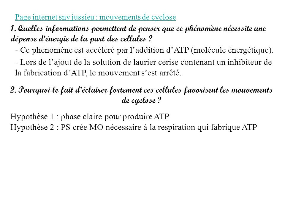 Hypothèse 1 : phase claire pour produire ATP