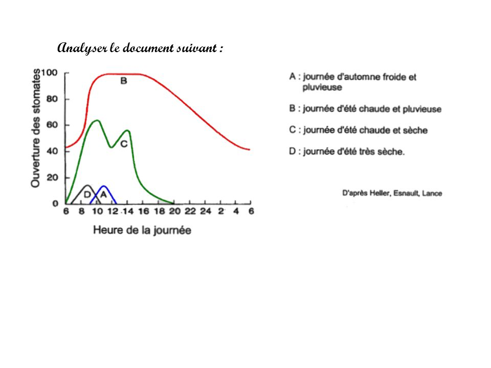 Analyser le document suivant :