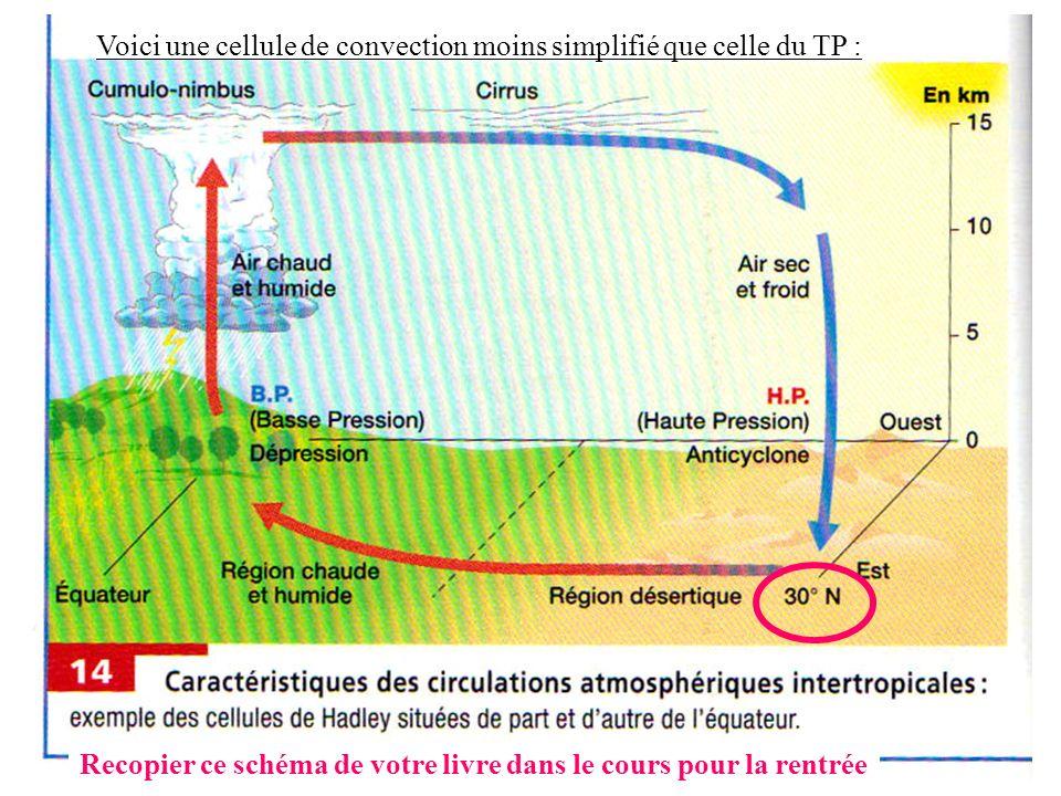 Voici une cellule de convection moins simplifié que celle du TP :