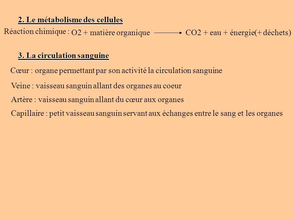 2. Le métabolisme des cellules