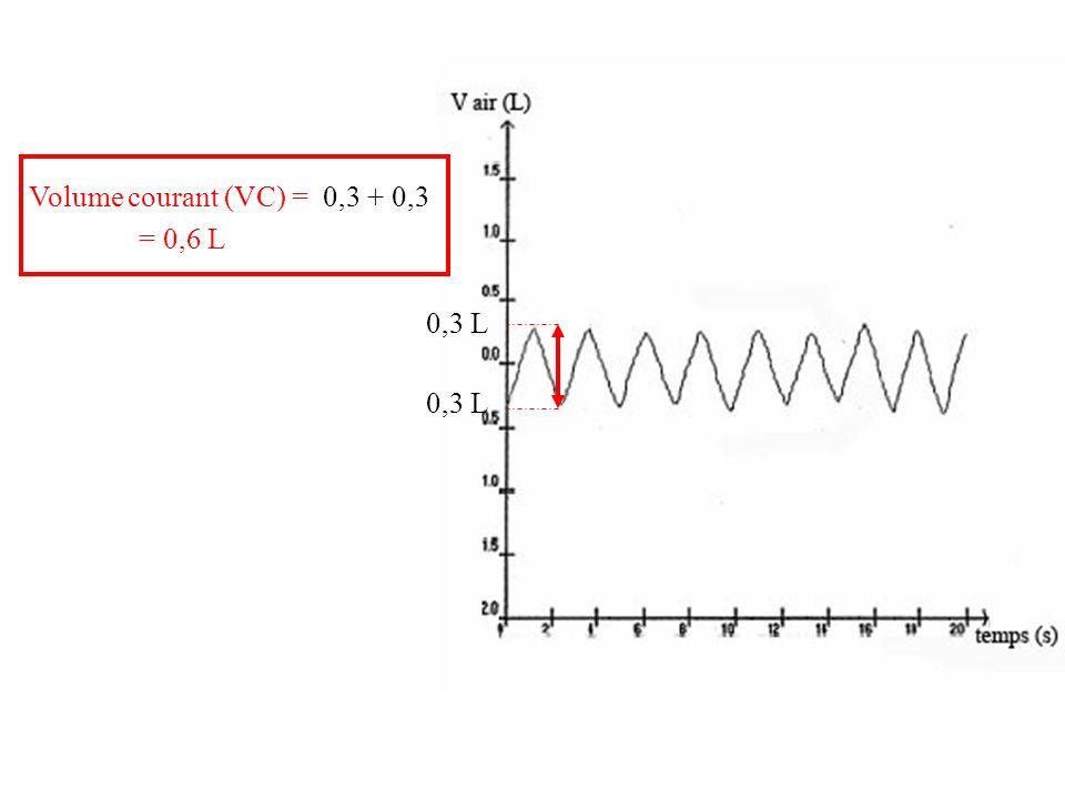 Volume courant (VC) = 0,3 + 0,3 = 0,6 L 0,3 L 0,3 L