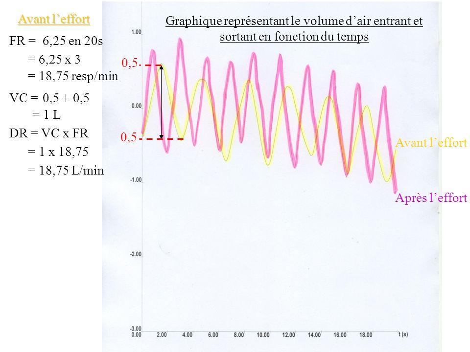 Avant l'effort Graphique représentant le volume d'air entrant et sortant en fonction du temps. FR =