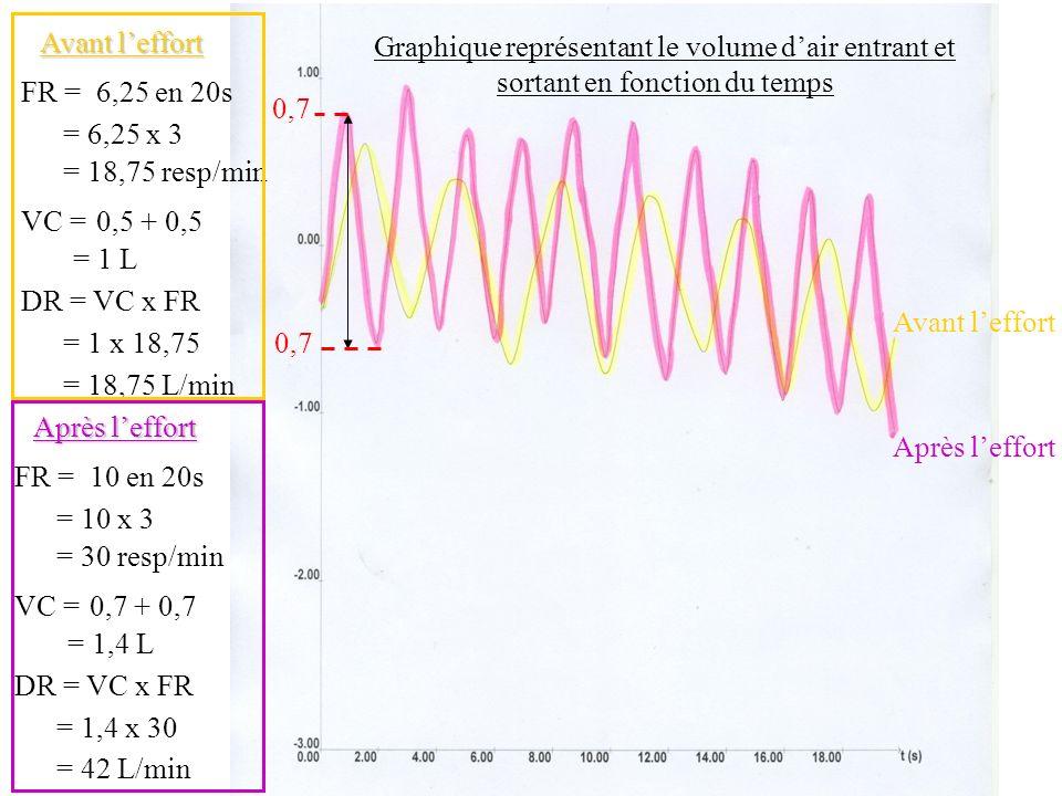 Avant l'effortGraphique représentant le volume d'air entrant et sortant en fonction du temps. FR = 6,25 en 20s.