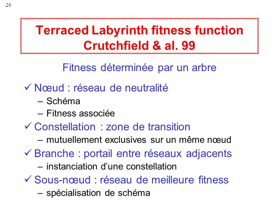 Terraced Labyrinth fitness function Crutchfield & al. 99