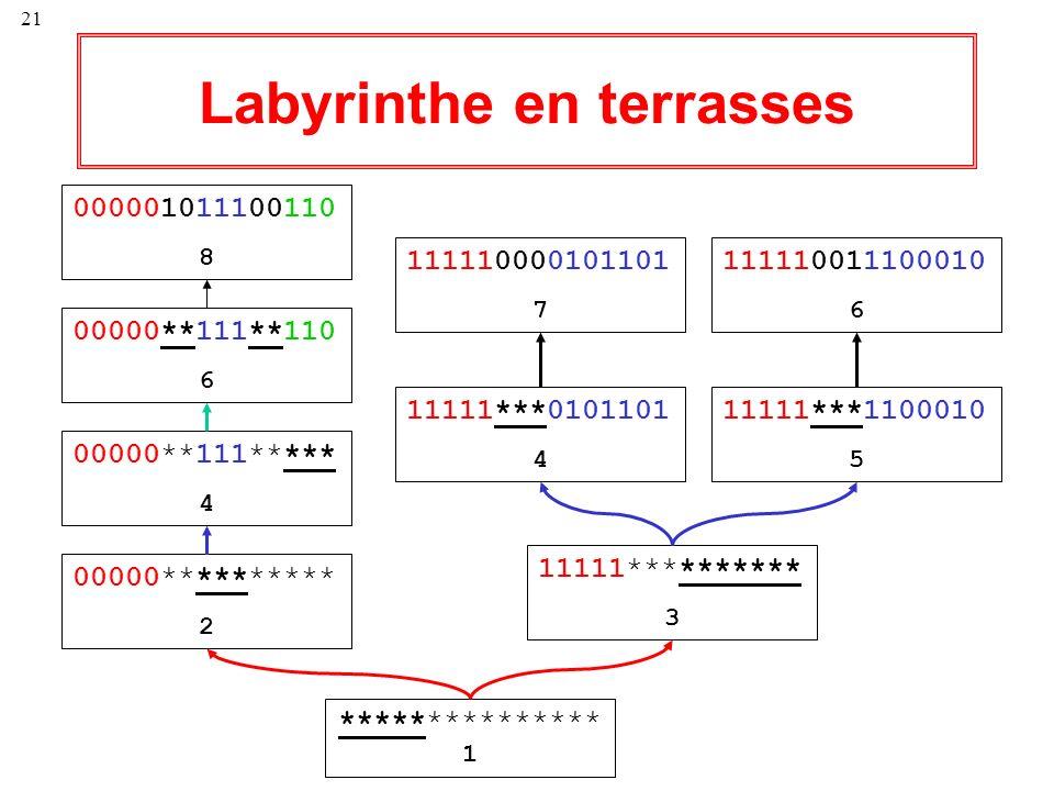 Labyrinthe en terrasses