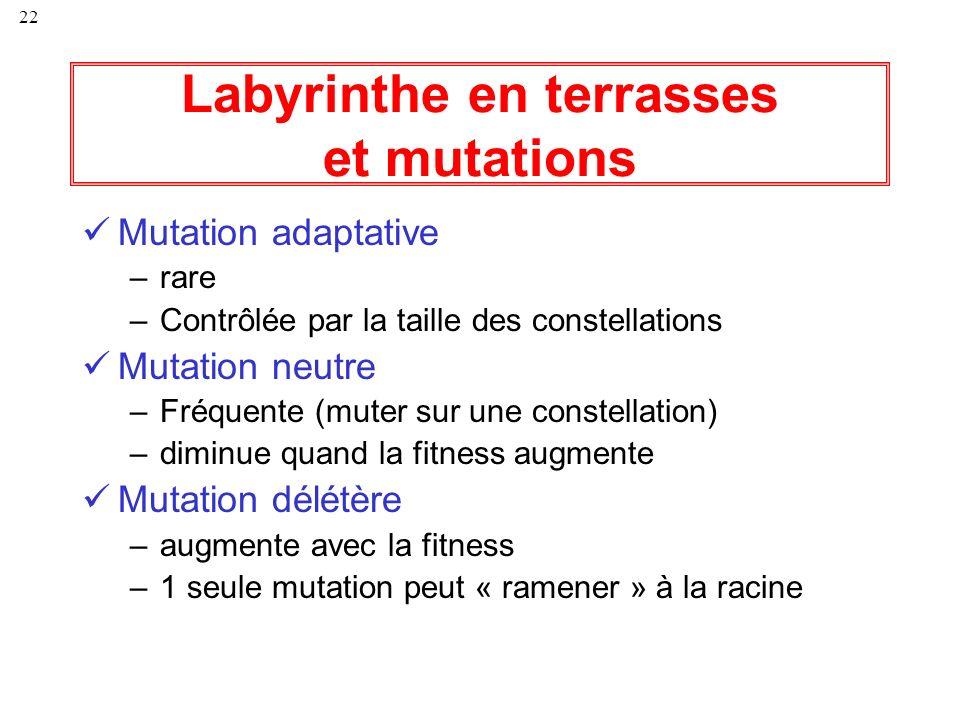 Labyrinthe en terrasses et mutations