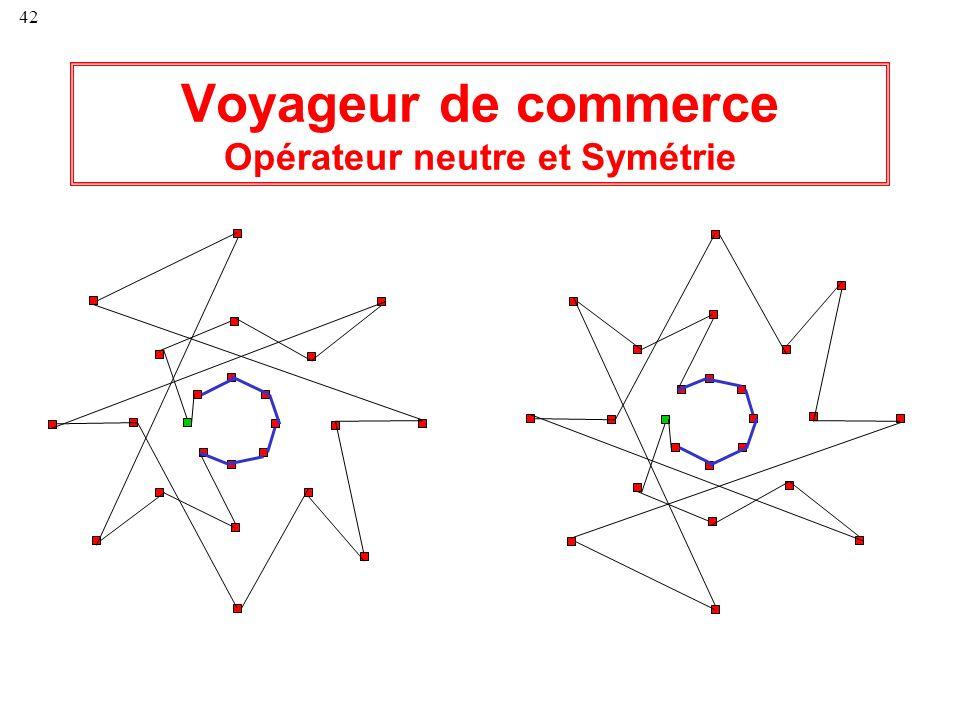 Voyageur de commerce Opérateur neutre et Symétrie