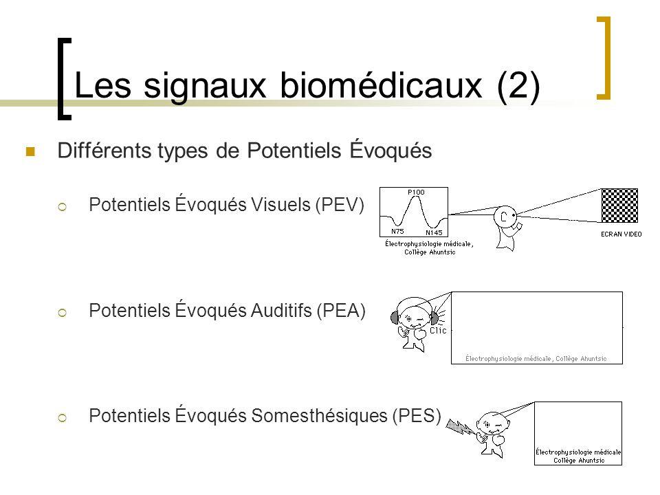 Les signaux biomédicaux (2)