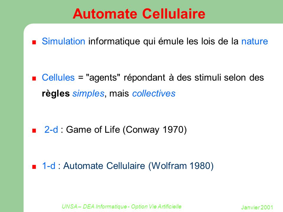 UNSA – DEA Informatique - Option Vie Artificielle