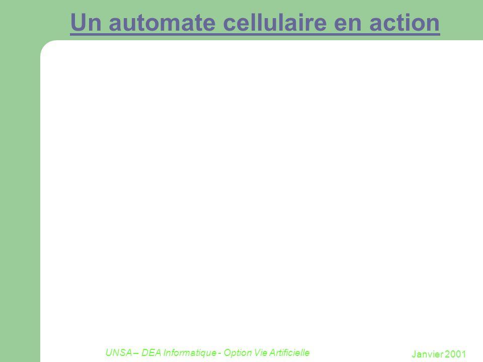 Un automate cellulaire en action