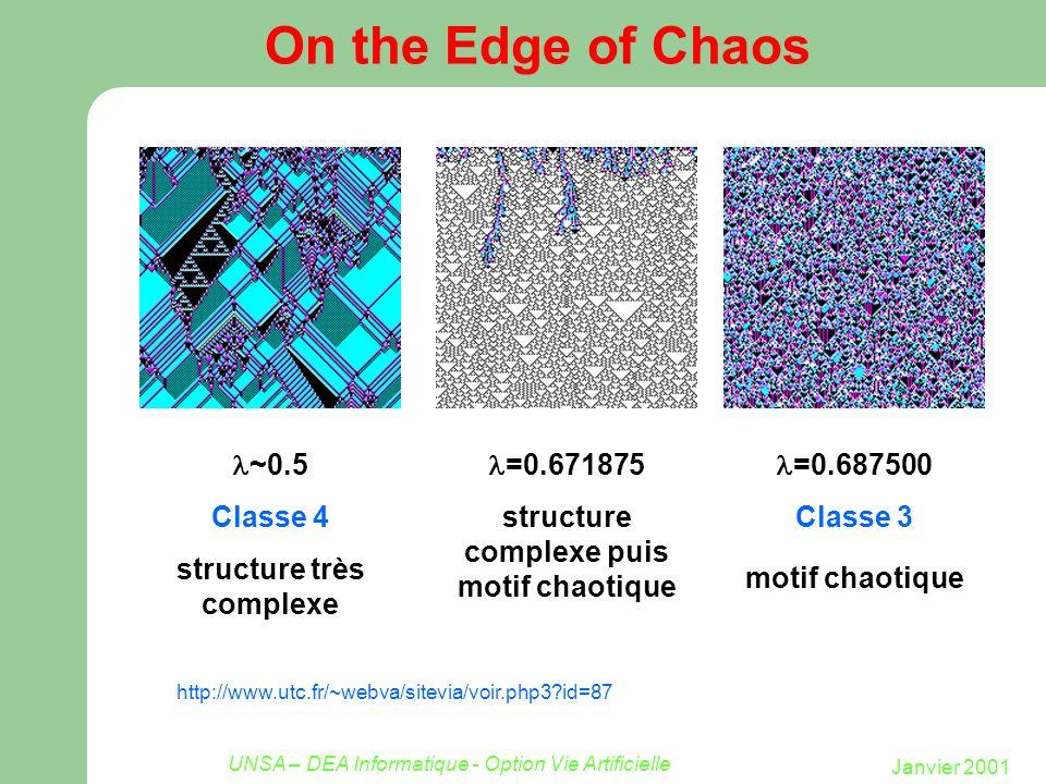 structure complexe puis motif chaotique