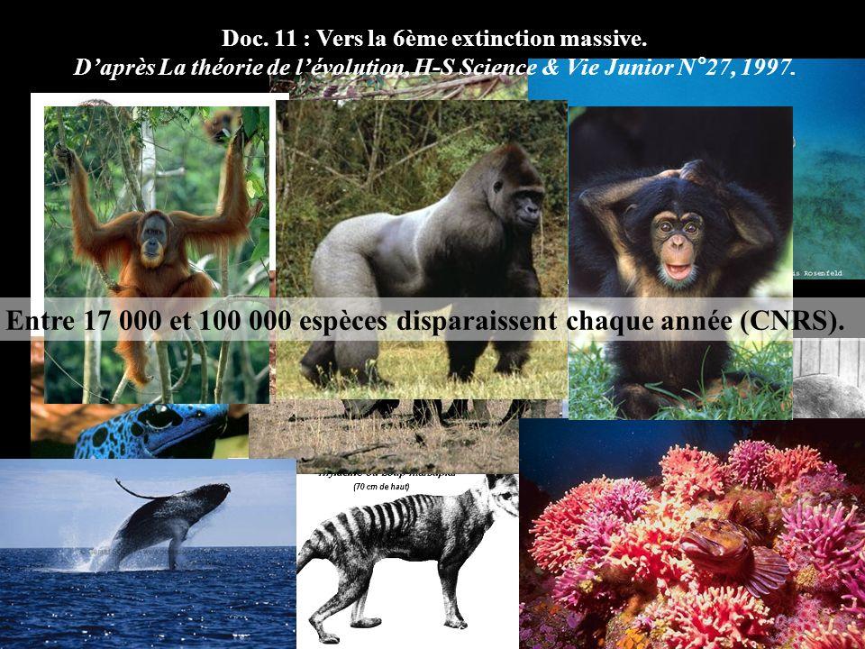 Doc. 11 : Vers la 6ème extinction massive.
